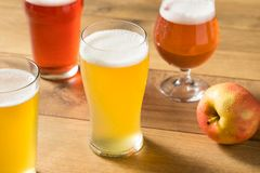 Assorted Alcoholic Hard Cider Flight. In Pint Glasses royalty free stock photography
