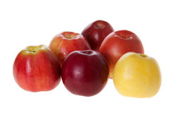 Assorted apples Royalty Free Stock Photography