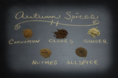 Assorted Autumn Spices Royalty Free Stock Photo