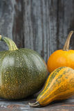 Assorted Autumn Squash Royalty Free Stock Images