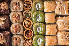 Assorted baklava desserts Stock Image