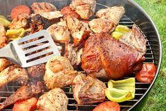 Assorted BBQ Roasted Pork And Chicken Meat With Vegetables. On The Hot Charcoal Grill With Smoke. Backyard Cookout Scene stock photos