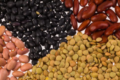 Assorted beans Royalty Free Stock Photography