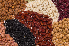 Assorted beans Stock Image