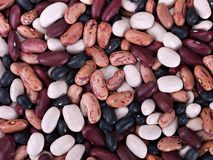 Assorted beans - macro Royalty Free Stock Images