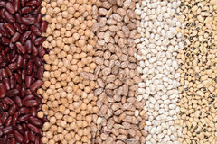 Assorted beans in a row Stock Photos