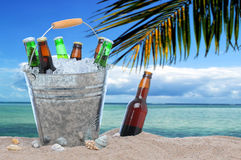 Assorted beer bottles in a bucket of ice Royalty Free Stock Photo
