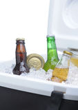 Assorted Beer Bottles and Cans in Cooler Royalty Free Stock Photo