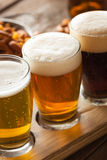 Assorted Beers in a Flight Stock Images