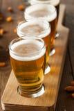 Assorted Beers in a Flight Stock Image