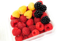 Assorted Berries. Blackberries with red and golden raspberries in a plastic store container on a white background Stock Photos