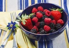 Assorted berries in a blue bowl. On a striped textile with napkin, silverware, and napkin ring Stock Images