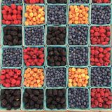 Assorted Berries on Blue Container Royalty Free Stock Photography