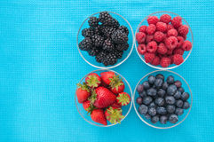 Assorted berries in bowls Royalty Free Stock Photo