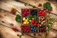 Assorted berries in box. Mix of fresh berries with leaves in vintage wooden box on rustic wooden background. Top view. Raw healthy food. Assorted berries Stock Images