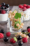 Assorted berries, currants,raspberries,strawberries. White currants in the glass. In the background yorgut with berries. Dessert Royalty Free Stock Image