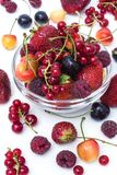 Assorted berries Stock Photography
