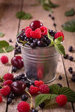 Assorted berries in pail. Small tin pail of assorted berries Stock Images