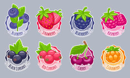 Assorted berries stickers set vector illustration. Stock Photos