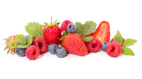 Assorted berry fruit Royalty Free Stock Photo