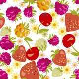 Assorted berry seamless pattern. Royalty Free Stock Images