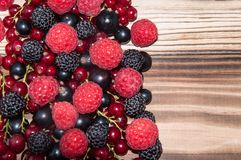 Assorted Berry on the wooden table Stock Image