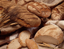 Assorted bread loaves Stock Image