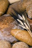Assorted Bread with Wheat. An assortment of breads with several stalks of wheat laying on top Royalty Free Stock Photography