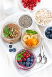 Assorted breakfast of chia seeds and fruits in jars Royalty Free Stock Photos