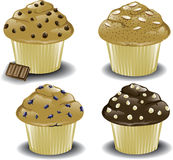 Assorted breakfast muffins Royalty Free Stock Photo