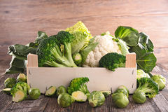 Assorted cabbage Royalty Free Stock Images