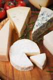 Assorted cheese on wooden platter Stock Images