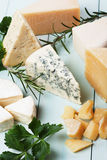 Assorted cheese Royalty Free Stock Photo
