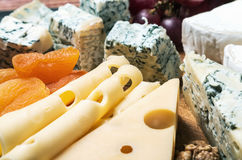 Assorted cheeses with nuts Stock Image