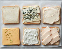 Assorted cheeses on toasts Stock Photos