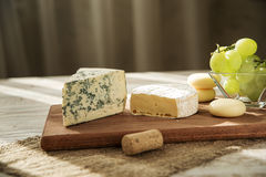 Assorted cheeses in various shapes and sizes Royalty Free Stock Photos
