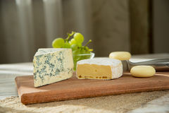 Assorted cheeses in various shapes and sizes Royalty Free Stock Photography