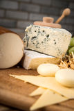 Assorted cheeses in various shapes and sizes Stock Photography