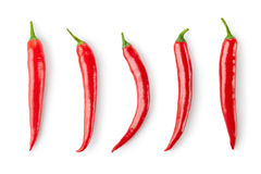 Assorted chili Peppers Stock Image