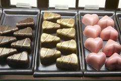 Assorted chocolate Royalty Free Stock Images