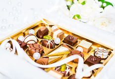 Assorted chocolate truffles Stock Photos