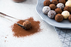 Assorted chocolate truffles with cocoa powder, coconut and chopped hazelnuts on a dessert plate.  stock images