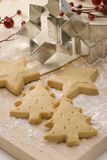 Assorted Christmas biscuits. Stock Images