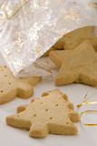 Assorted Christmas cookies. Royalty Free Stock Photos