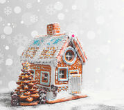 Assorted Christmas gingerbread cookies Stock Image
