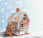 Assorted Christmas gingerbread cookies Royalty Free Stock Photos
