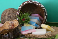 Assorted coconut soap. Coconut oil soap infused with the tropical, therapeutic essential oils of vanilla, citronella, frangipani and vanilla Stock Images