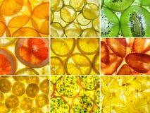 Assorted collage of nine back lit fruit slices Stock Image