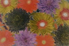 Assorted-color Flowers Painting Stock Photo
