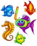 Assorted colorful fish Stock Photography